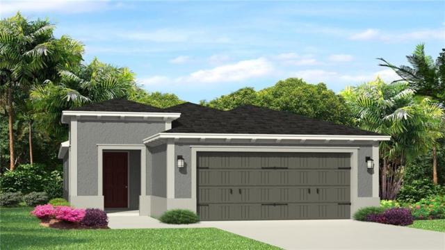 4630 Tramanto Lane, Wesley Chapel, FL 33543 (MLS #T3121444) :: Team Bohannon Keller Williams, Tampa Properties