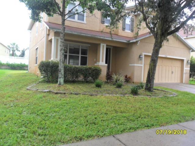 7243 Bridgeview Drive, Wesley Chapel, FL 33545 (MLS #T3121586) :: Team Bohannon Keller Williams, Tampa Properties