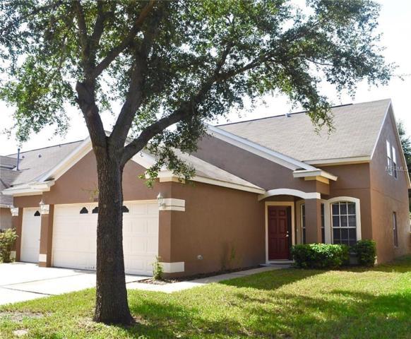 10815 Newbridge Drive, Riverview, FL 33579 (MLS #T3121593) :: Medway Realty