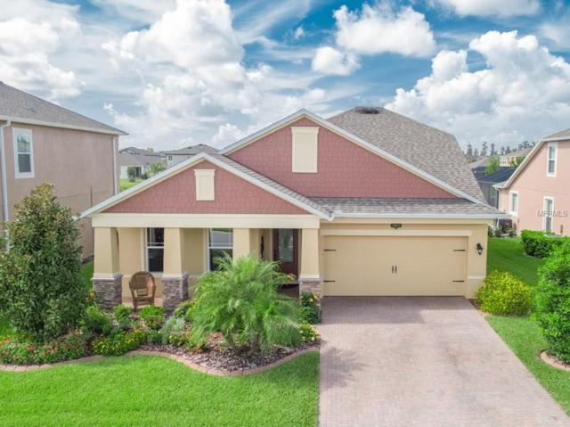 18878 Pampass Grass Lane, Lutz, FL 33558 (MLS #T3121723) :: The Duncan Duo Team