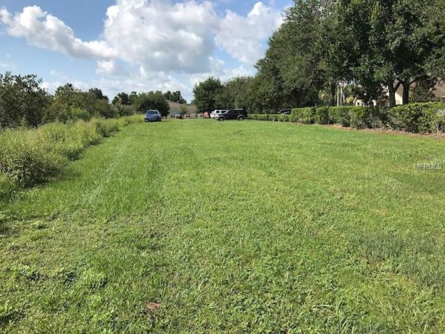 Collier, Land O Lakes, FL 34639 (MLS #T3121940) :: Mark and Joni Coulter | Better Homes and Gardens