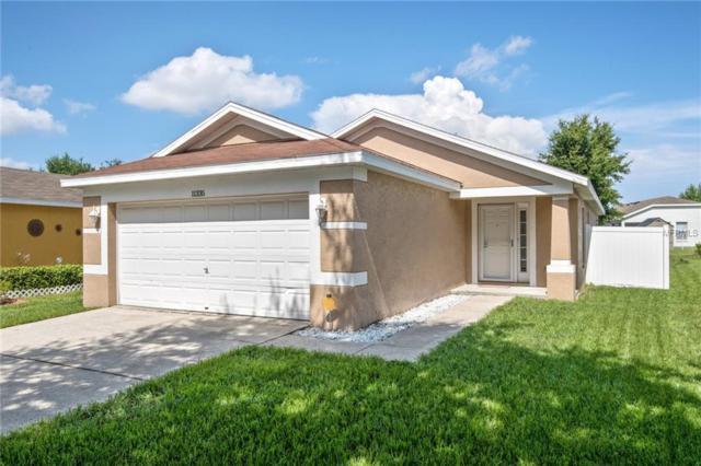 11335 Palm Island Avenue, Riverview, FL 33569 (MLS #T3121977) :: The Duncan Duo Team