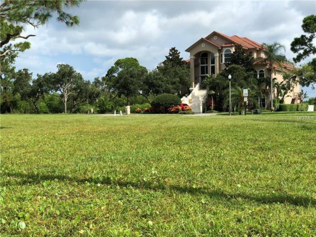 Lot 114 N Pointe Alexis Drive, Tarpon Springs, FL 34689 (MLS #T3122042) :: The Duncan Duo Team