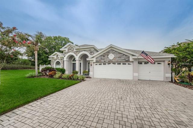 16404 Blue Whetstone Lane, Odessa, FL 33556 (MLS #T3122179) :: Team Bohannon Keller Williams, Tampa Properties