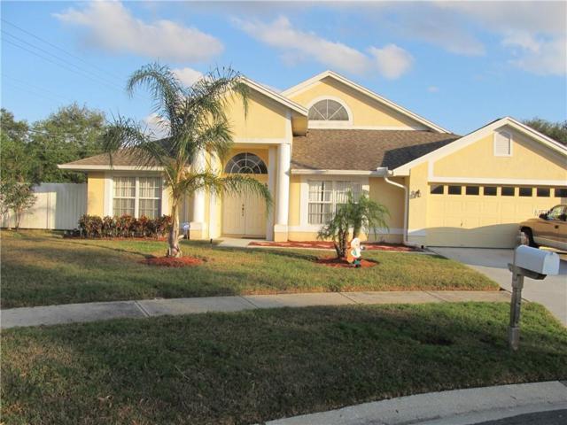 11302 Palm Pasture Drive, Tampa, FL 33635 (MLS #T3122226) :: Team Bohannon Keller Williams, Tampa Properties