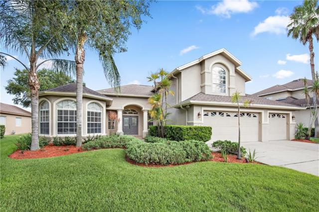 4542 Roanoak Way, Palm Harbor, FL 34685 (MLS #T3122369) :: O'Connor Homes