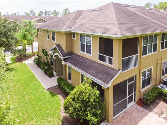 12616 Silverdale Street, Tampa, FL 33626 (MLS #T3122384) :: The Duncan Duo Team