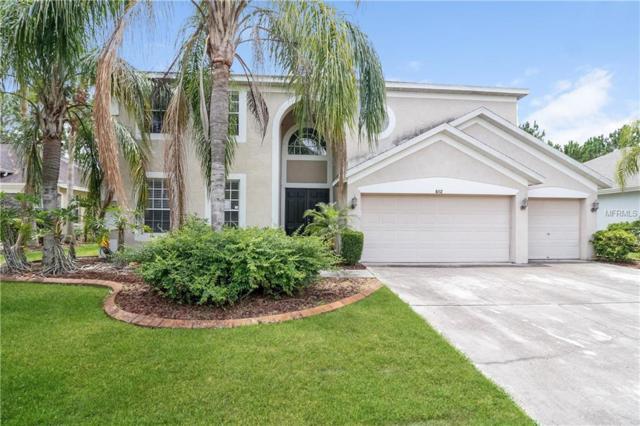 Address Not Published, Lutz, FL 33558 (MLS #T3122399) :: Team Bohannon Keller Williams, Tampa Properties