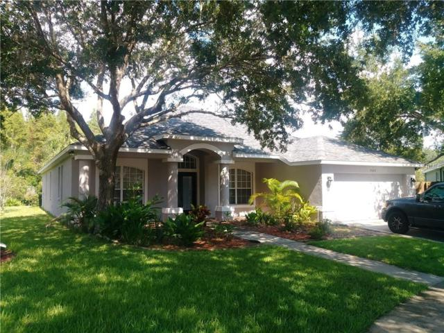 Address Not Published, Lutz, FL 33558 (MLS #T3122465) :: Team Bohannon Keller Williams, Tampa Properties