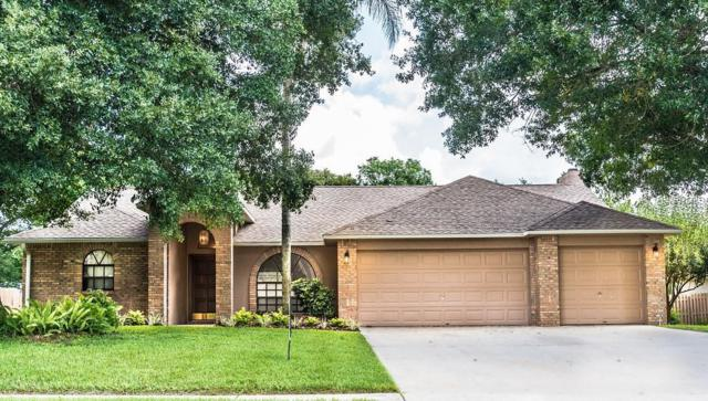 3951 Appletree Drive, Valrico, FL 33594 (MLS #T3122478) :: The Duncan Duo Team