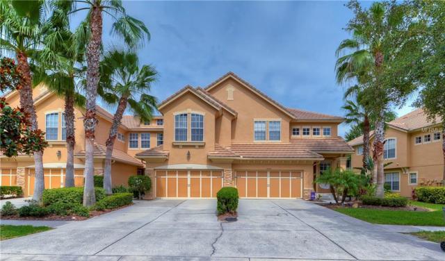 14444 Mirabelle Vista Circle, Tampa, FL 33626 (MLS #T3122551) :: The Duncan Duo Team