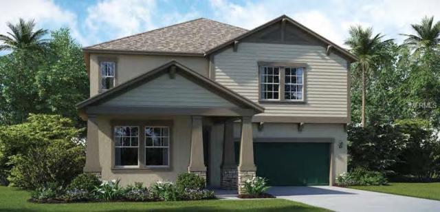 10016 Sage Creek Drive, Ruskin, FL 33573 (MLS #T3122582) :: TeamWorks WorldWide