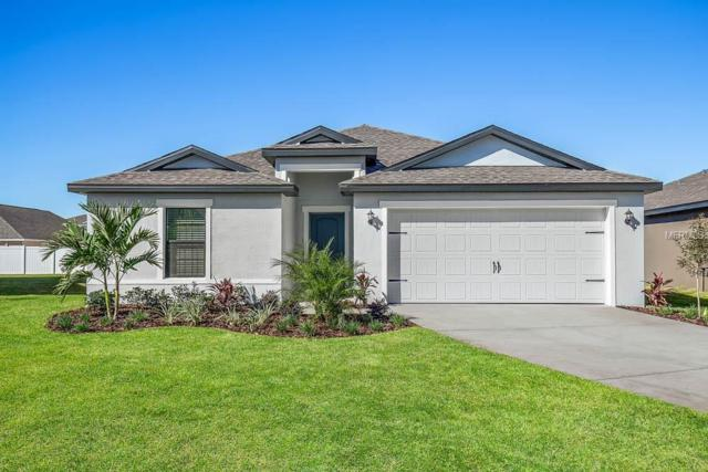 12526 Ballentrae Forest Drive, Riverview, FL 33579 (MLS #T3122754) :: The Duncan Duo Team