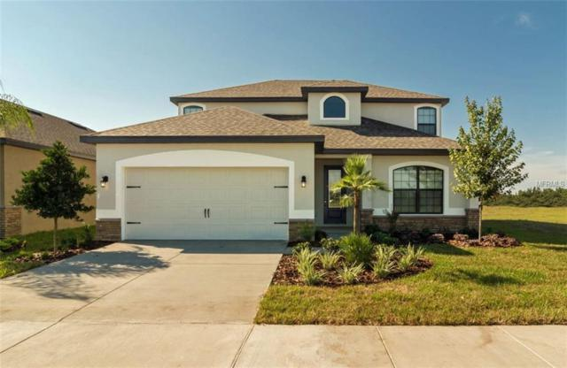 11845 Valhalla Woods Drive, Riverview, FL 33579 (MLS #T3122769) :: The Duncan Duo Team