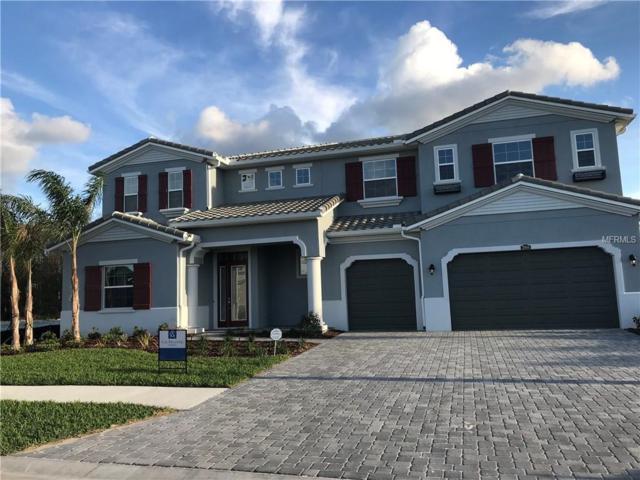 29104 Picana Lane, Wesley Chapel, FL 33544 (MLS #T3122804) :: Team Bohannon Keller Williams, Tampa Properties