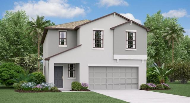 10005 Rosemary Leaf Lane, Riverview, FL 33578 (MLS #T3122832) :: The Duncan Duo Team