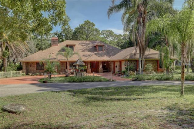 10103 Tarpon Springs Road, Odessa, FL 33556 (MLS #T3122834) :: Team Bohannon Keller Williams, Tampa Properties
