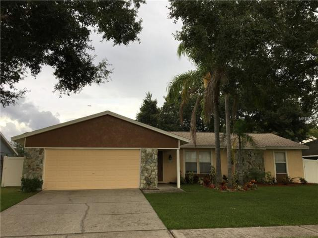 15103 Lake Holly Place, Tampa, FL 33625 (MLS #T3122868) :: Team Bohannon Keller Williams, Tampa Properties