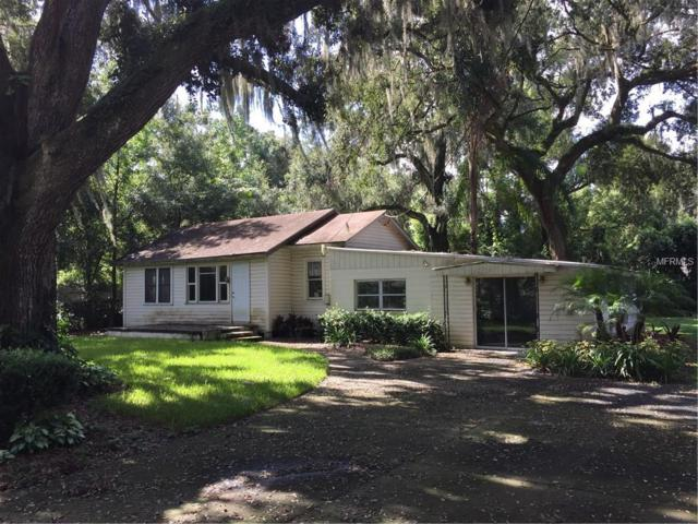 2601 N Wilder Loop, Plant City, FL 33565 (MLS #T3122890) :: The Duncan Duo Team