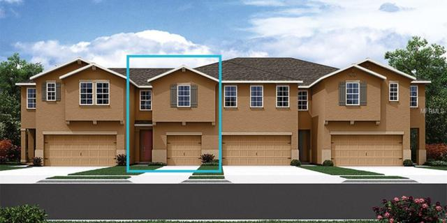17805 Althea Blue Place 82/12, Lutz, FL 33558 (MLS #T3122899) :: The Duncan Duo Team
