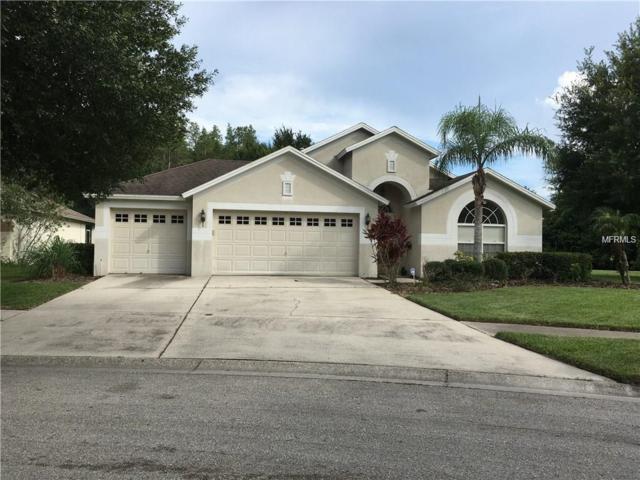 10213 Timberland Point Drive, Tampa, FL 33647 (MLS #T3122959) :: Team Bohannon Keller Williams, Tampa Properties