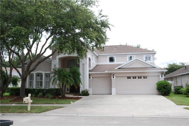 18129 Pheasant Walk Drive, Tampa, FL 33647 (MLS #T3122988) :: Team Bohannon Keller Williams, Tampa Properties