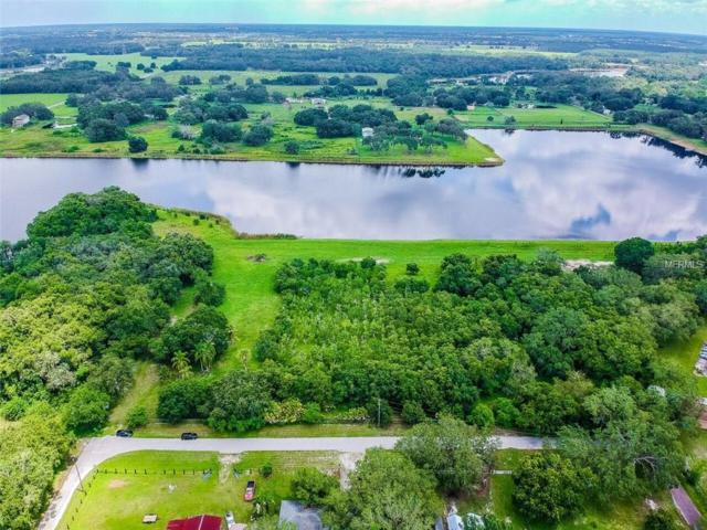 7 Beech Street, Odessa, FL 33556 (MLS #T3123021) :: Mark and Joni Coulter | Better Homes and Gardens