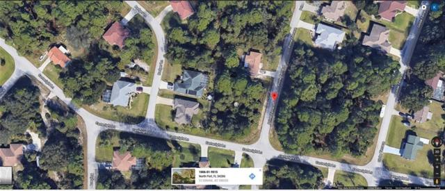 Prime Terrace, North Port, FL 34286 (MLS #T3123144) :: Team Pepka