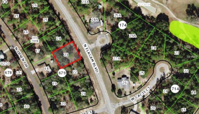 8080 N Elkcam Boulevard, Citrus Springs, FL 34433 (MLS #T3123199) :: Bustamante Real Estate