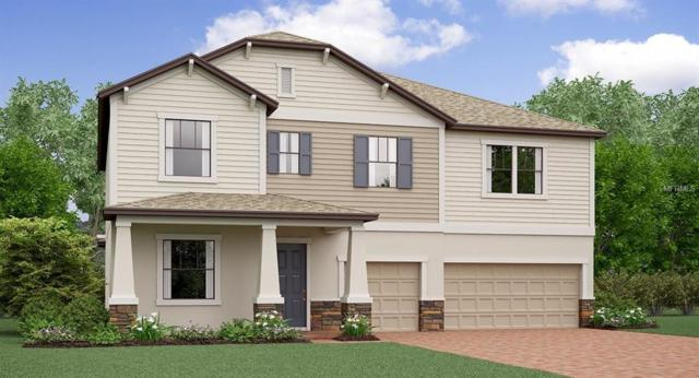 13303 Orca Sound Drive, Riverview, FL 33579 (MLS #T3123200) :: The Duncan Duo Team