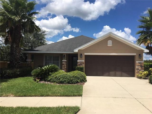 14457 Barley Field Drive, Wimauma, FL 33598 (MLS #T3123266) :: Team Bohannon Keller Williams, Tampa Properties