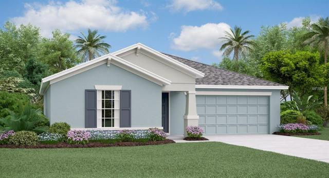 10409 Fairy Moss Lane, Riverview, FL 33578 (MLS #T3123336) :: The Duncan Duo Team