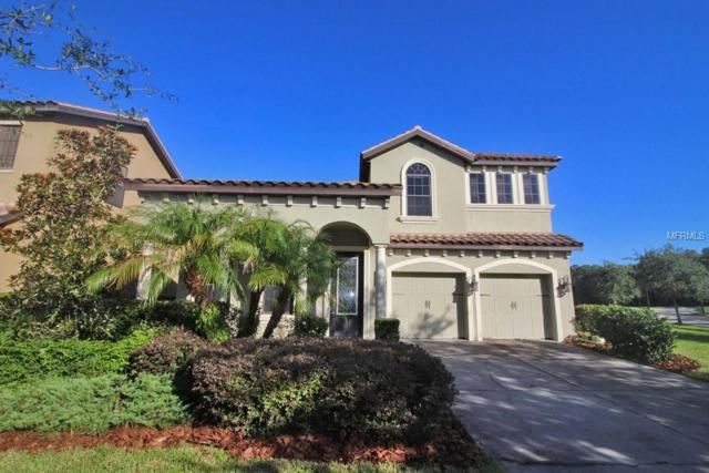 20342 Heritage Point Drive, Tampa, FL 33647 (MLS #T3123382) :: Team Bohannon Keller Williams, Tampa Properties