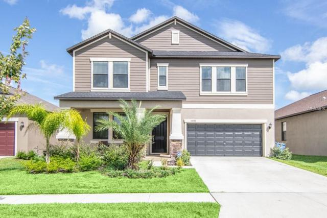 14046 Tropical Kingbird Way, Riverview, FL 33579 (MLS #T3123384) :: Griffin Group
