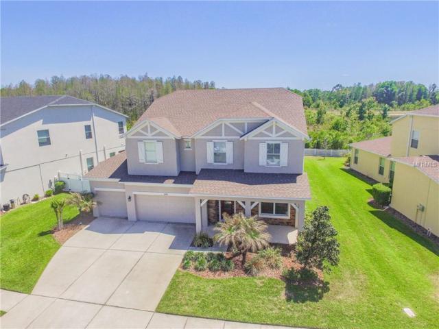 4080 Windcrest Drive, Wesley Chapel, FL 33544 (MLS #T3123482) :: Team Bohannon Keller Williams, Tampa Properties