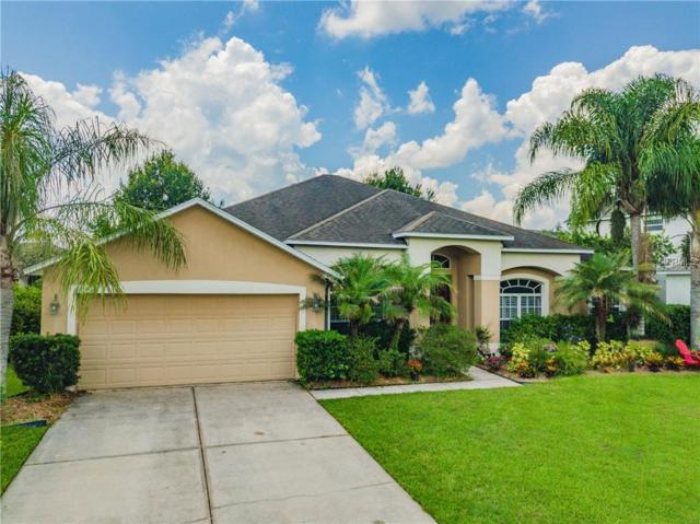26615 Shoregrass Drive, Wesley Chapel, FL 33544 (MLS #T3123499) :: Team Bohannon Keller Williams, Tampa Properties