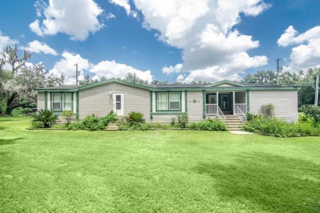 39925 Jerry Road, Zephyrhills, FL 33540 (MLS #T3123560) :: Premium Properties Real Estate Services