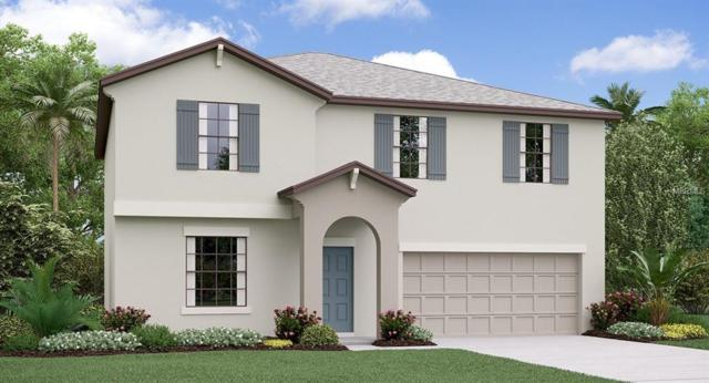 14138 Covert Green Place, Riverview, FL 33579 (MLS #T3123571) :: The Duncan Duo Team