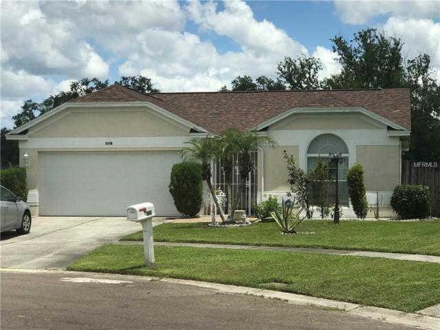11219 Thicket Court, Tampa, FL 33624 (MLS #T3123650) :: Team Bohannon Keller Williams, Tampa Properties