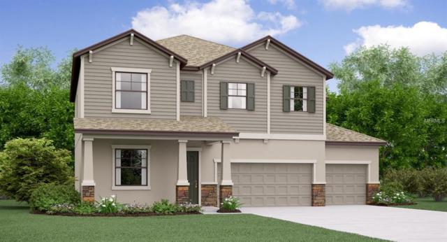 9905 Sage Creek Drive, Ruskin, FL 33573 (MLS #T3123805) :: TeamWorks WorldWide