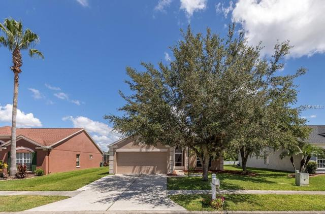 29643 Morningmist Drive, Wesley Chapel, FL 33543 (MLS #T3123834) :: The Duncan Duo Team