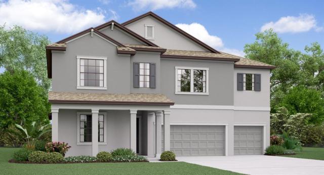 9901 Sage Creek Drive, Ruskin, FL 33573 (MLS #T3123836) :: TeamWorks WorldWide