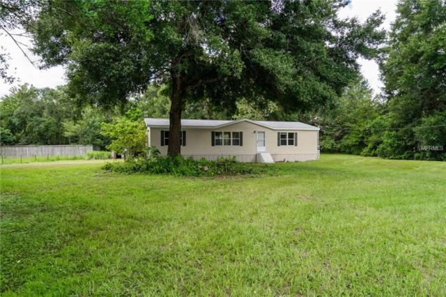 17512 Valencia Drive, Spring Hill, FL 34610 (MLS #T3123838) :: Mark and Joni Coulter | Better Homes and Gardens