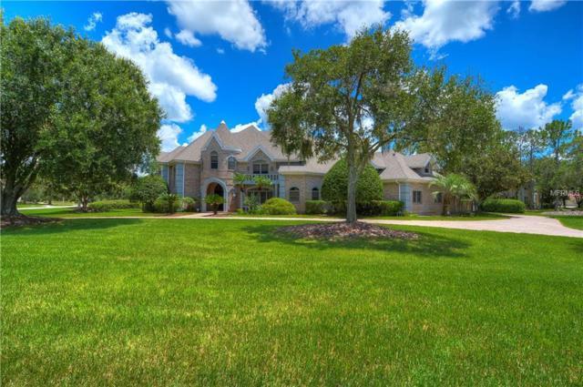 4123 Highland Park Circle, Lutz, FL 33558 (MLS #T3123884) :: The Duncan Duo Team