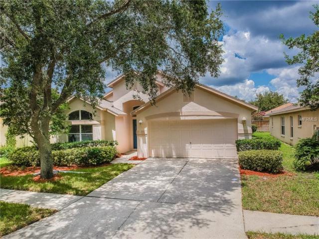 9923 Stockbridge Drive, Tampa, FL 33626 (MLS #T3123899) :: The Duncan Duo Team