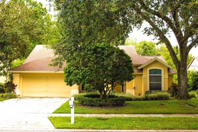 6710 Yardley Way, Tampa, FL 33647 (MLS #T3123995) :: Revolution Real Estate