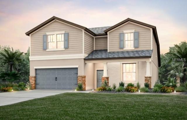 5026 Fallen Leaf, Riverview, FL 33578 (MLS #T3124000) :: Revolution Real Estate