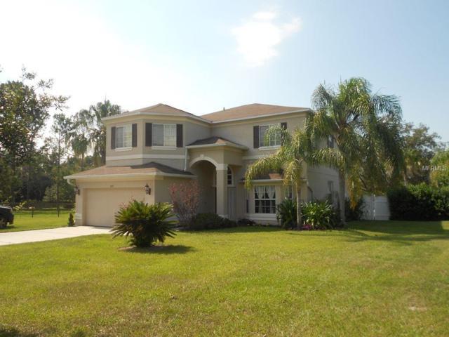 29711 Wells Road, Wesley Chapel, FL 33545 (MLS #T3124056) :: Premium Properties Real Estate Services