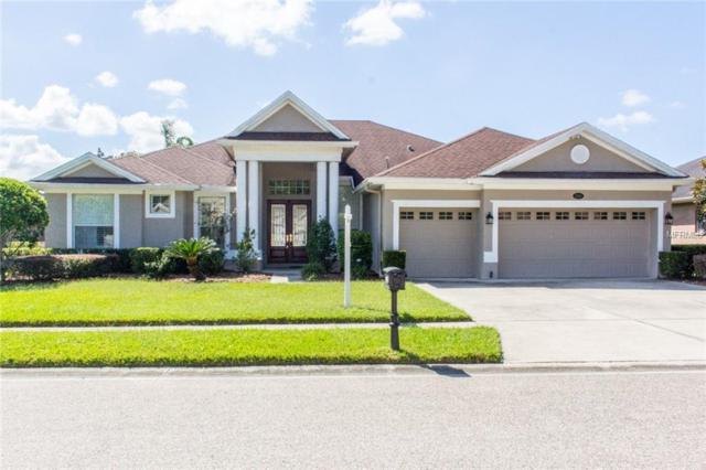 16143 Ivy Lake Drive, Odessa, FL 33556 (MLS #T3124131) :: Team Bohannon Keller Williams, Tampa Properties