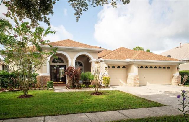 10510 Rochester Way, Tampa, FL 33626 (MLS #T3124146) :: Team Bohannon Keller Williams, Tampa Properties